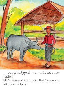 My_buffalo_3